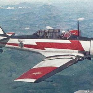Flávio T-6-Tiger 26