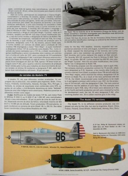 P-40_02