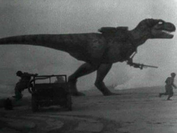 t-rex combat